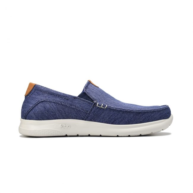 wally-azul-1